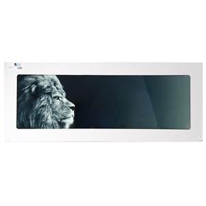 Stikla fotoglezna LOWE 50x125cm