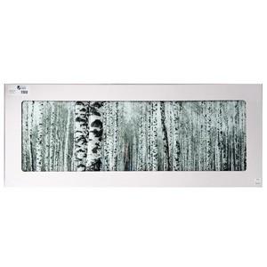 Stikla fotoglezna BAUME WEIS 50x125cm