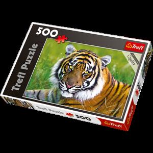 Trefl Daba, puzle Tīģeris, 500 gb.