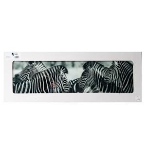 Stikla fotoglezna ZEBRA 33x95cm