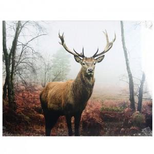 Glezna ar LED 60x80cm Deer